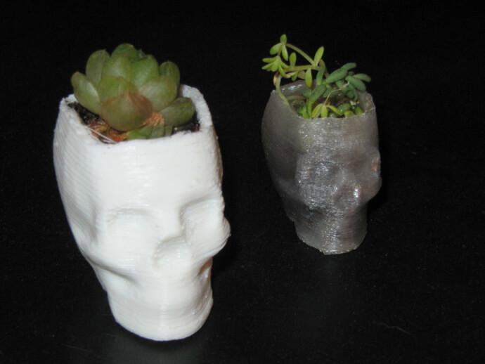 3d-modell vase totenkopf skull 3d model