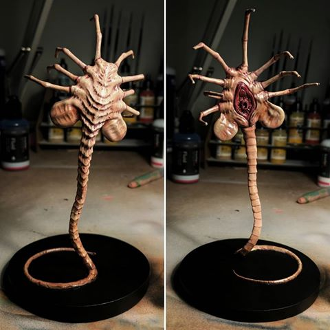 3d-modell alien facehugger 3d model