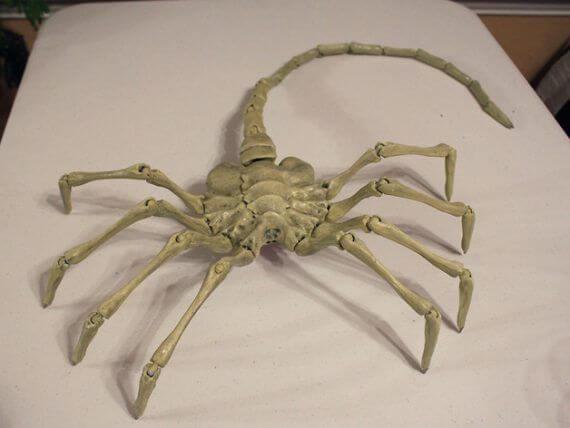 3d-modell alien facehugger 3d-model