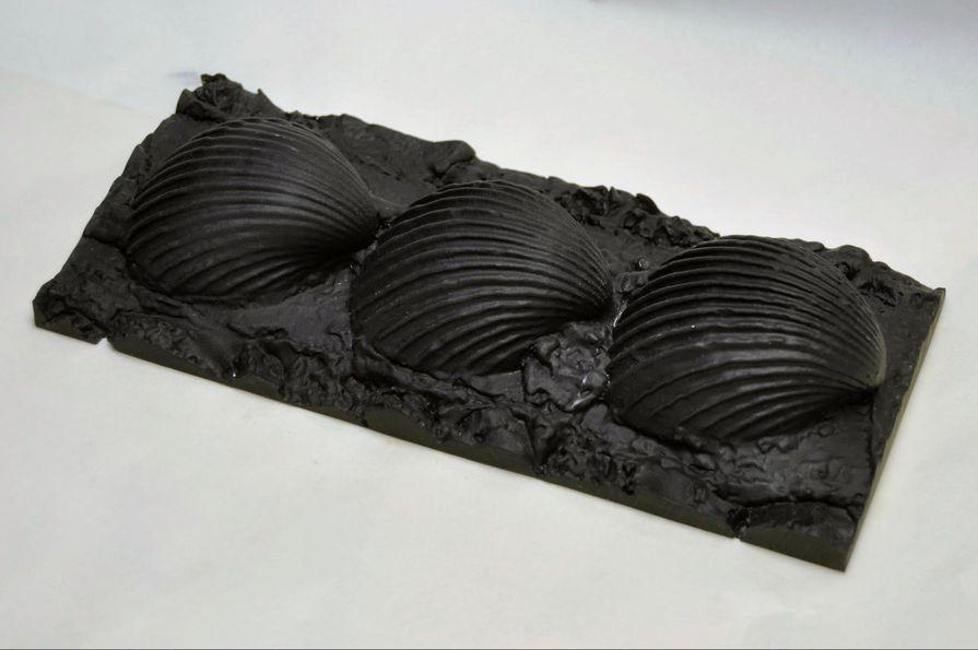 3D-gedruckte Muscheln Formlabs