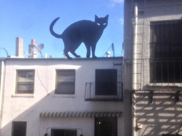 3d-modell fenster katze 3d model window cat
